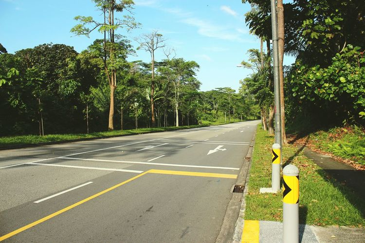 ́In the middle of nowhere Singapore Before Singapore Zoo Bus Stop Isolated InTheMiddleOfNoWhere Just Around The Corner RePicture Travel