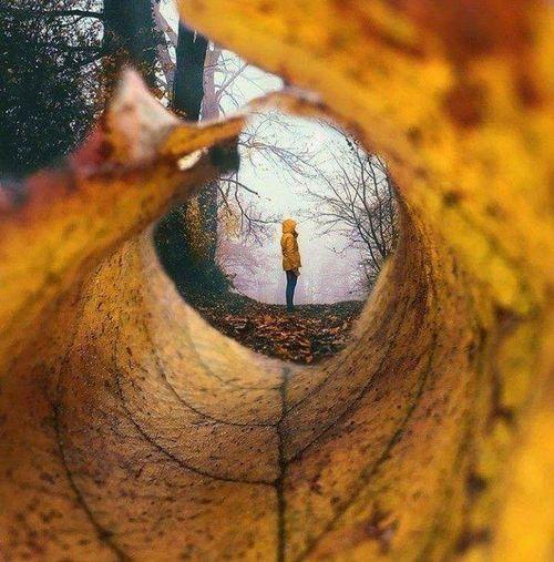 Nature Vibes Jaune🌻 Yallow Love Men Close-up First Eyeem Photo