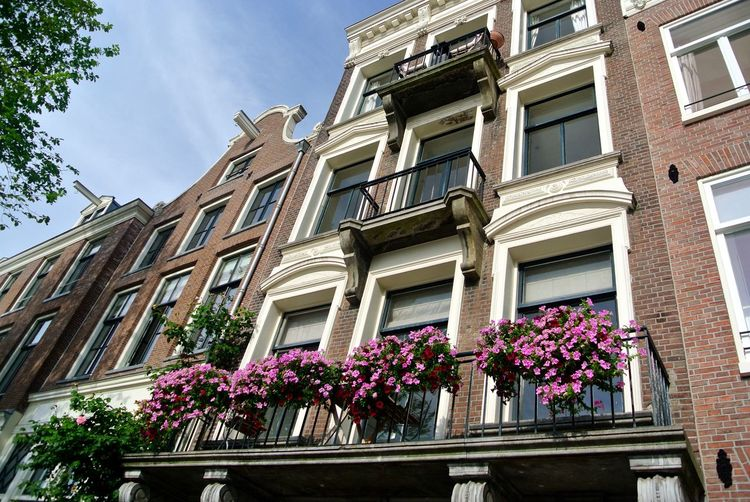 Staalstraat Amsterdam Amsterdam Architecture Arch Architecture Balcony Building Exterior Built Structure City Life EyeEm Best Shots Flower Flowerbeds Fragility Freshness Growth Low Angle View Potted Plant Railing Residential Building Residential Structure Staalstraat Wall - Building Feature Window Windowsill Your Amsterdam Showcase April Your Ticket To Europe