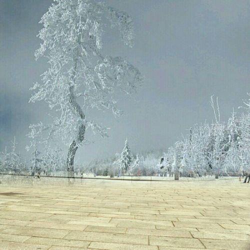 Piazza Duomo Milano Deserta Inverno❄❄❄ Freddo Polare!😆 Solo Paisaje Natural EyeEm Photo #rho