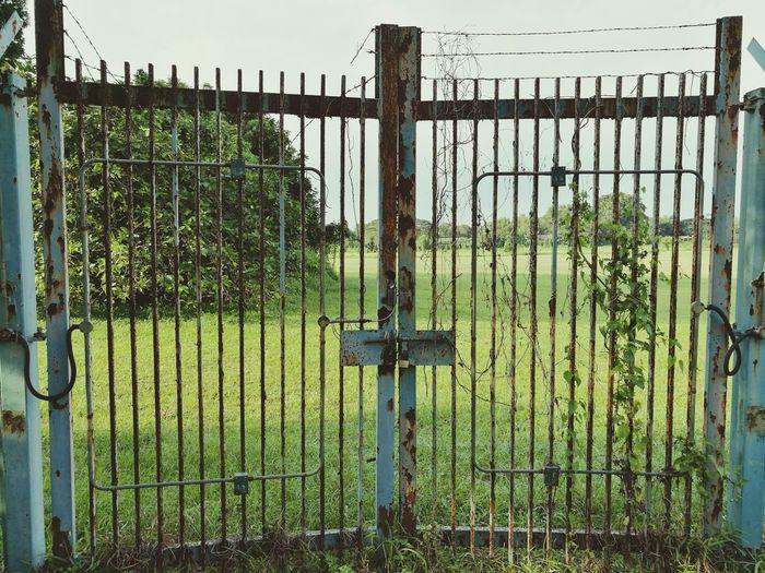 Oldgate Forbidden Oldmetalgate Rustygate Oldrustygate Old Ruin Old Door Rusty Metal Gate Background