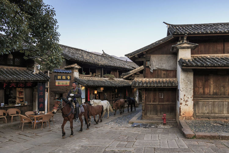 Shaxi, China - February 21, 2019: Horses riding in the center of Shaxi old town at dusk Shaxi China ASIA Yunnan Yunnan ,China Market South Silk Road Tea Horse Road Minority Ethnic Group Old Town Kunming, China Landscape People Night Teather Old