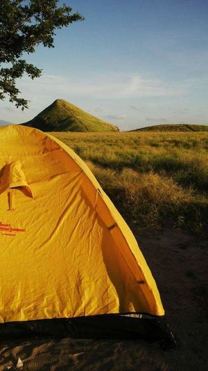 Camping ground Nature Outdoors