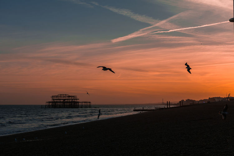 Views from Brighton! Mid flight.. Sunset Beach Silhouette Sand Landscape Kent Nikon Photooftheday Summer No People Multi Colored Colours Flying Horizon Over Water Water's Edge Eye4photography  Travel Destinations Outdoors Creative Photography Taking Photos Faversham Sea And Sky Sun England Tones