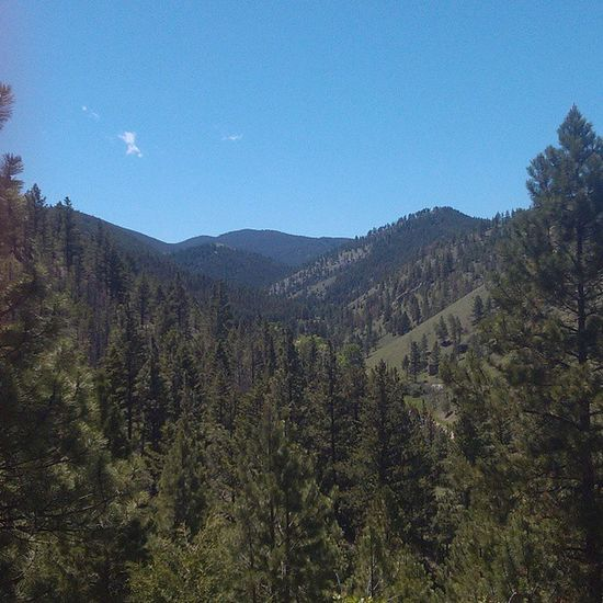 Beautiful day to hit the trails in Helena Montana ! Waterlinetrailway Mountains hiking doingit