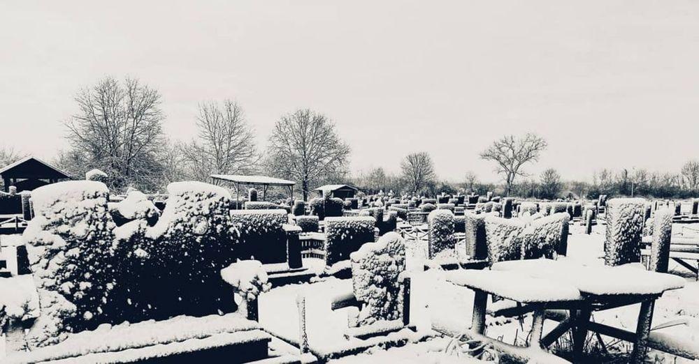 Snow covered cemetery against sky