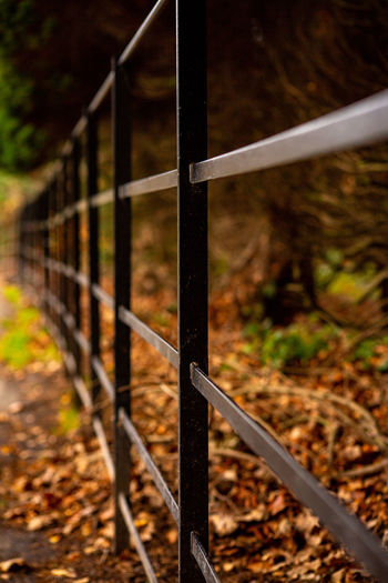 railings and