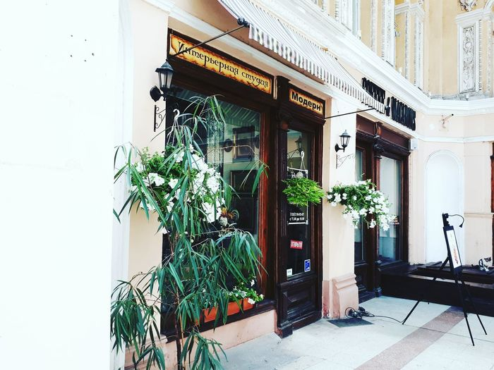 Architecture Door Building Exterior Built Structure Traveling EyeEm Enjoying Life Hello World EyeEm Gallery Beautifulthings Outdoors Plant Window Potted Plant Day Growth No People Flower