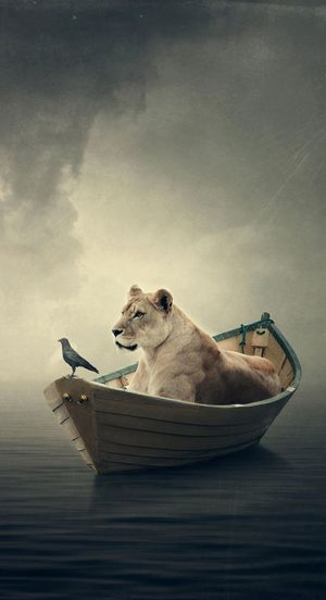 Digital composite image of lion in boat with crow on lake against sky