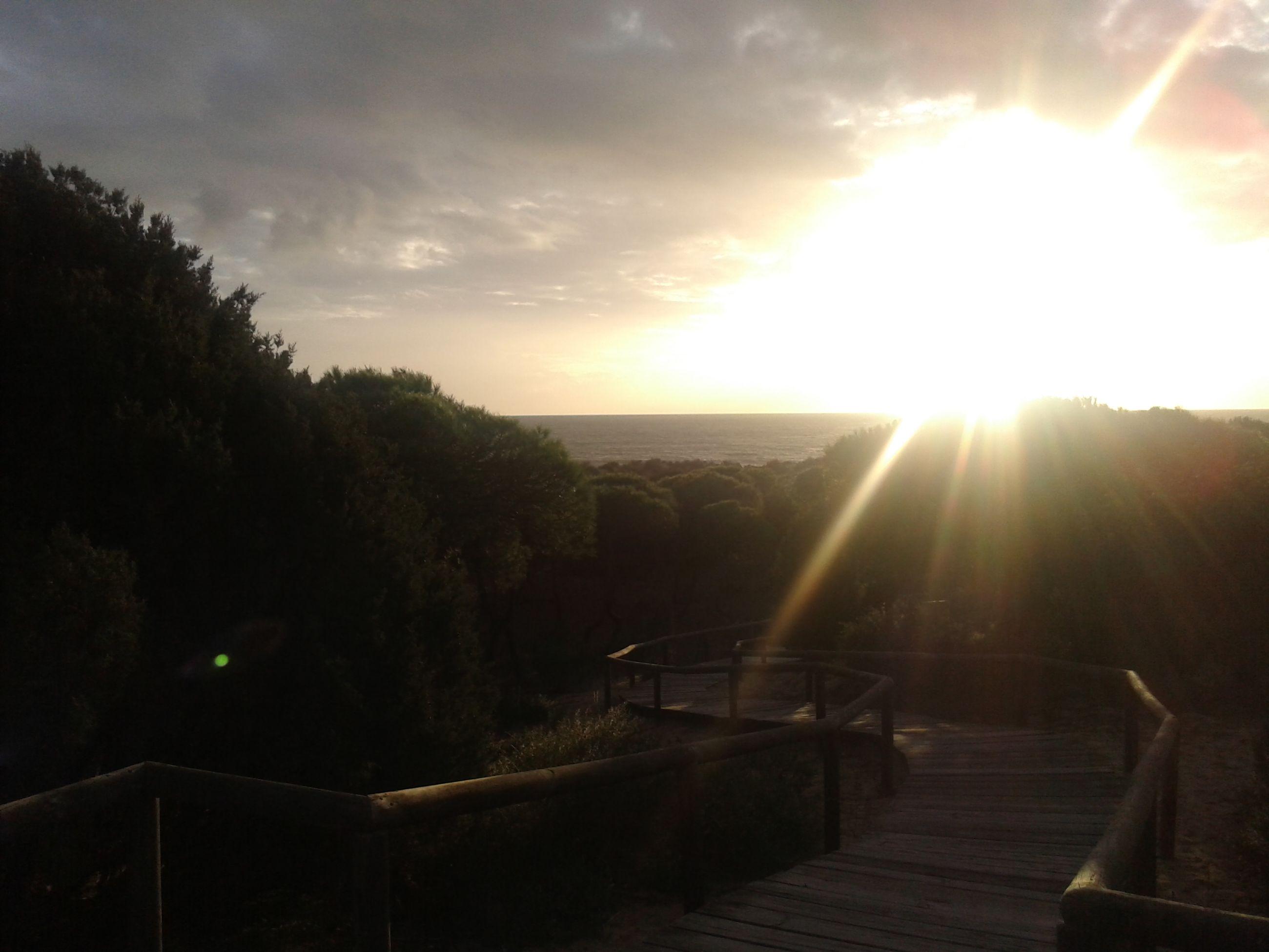 sun, sunbeam, sunlight, sunset, lens flare, sky, scenics, tranquil scene, beauty in nature, tranquility, sea, nature, water, horizon over water, idyllic, cloud - sky, railing, sunny, tree, bright