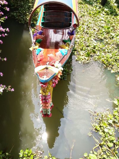 Thai boat เรือหางยาว Thailand Cultures Adventures In The City Water Low Section Full Length Nautical Vessel Adventure Reflection River Sunlight Floating On Water Rear View Boat Water Vehicle Moving