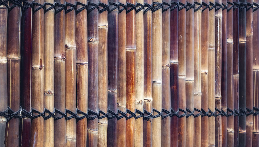 Natural bamboo fence background texture Bamboo Tree... Backgrounds Bamboo - Material Bamboo - Plant Bamboo Art Bamboo Fence Barrier Boundary Brown Close-up Day Detail Fence Fence Photography Full Frame Iron Metal Natural Fence No People Outdoors Pattern Protection Repetition Safety Security Side By Side Silver Colored Textured  Wood - Material