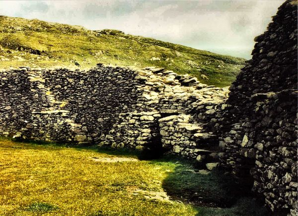 Staigue stone fort Agriculture Beauty In Nature Day Field Grass Growth Historical Building Ireland Landscape Nature No People Outdoors Prehistoric Monument Rural Scene Scenics Sky Tranquility Tree