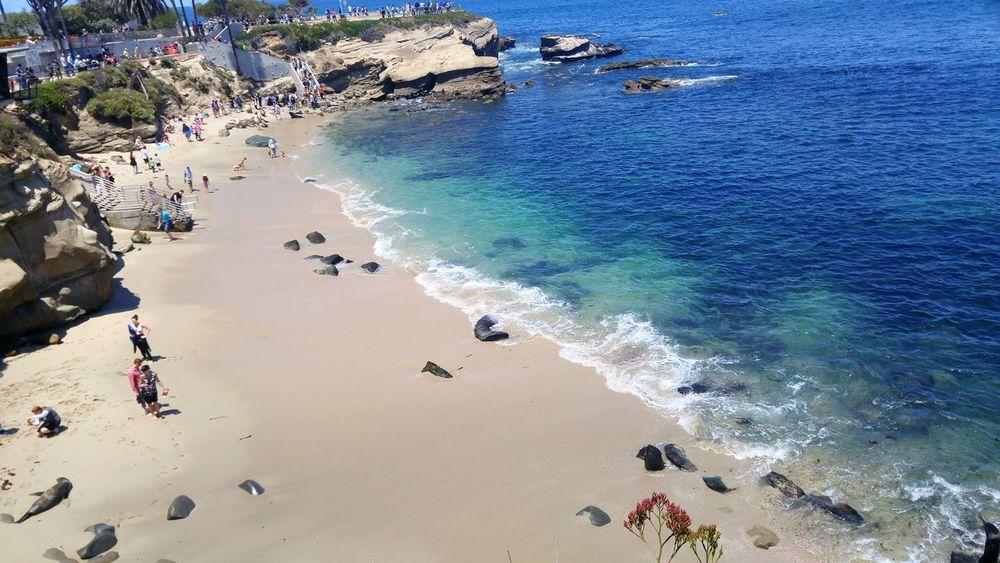 Lajolla Lajollacove Hanging Out San Diego California Beach Beuatiful Check This Out Enjoying Life Maychallenge 2016 Eeyem Challenge Relaxing TheWeekOnEyeEM Flying High