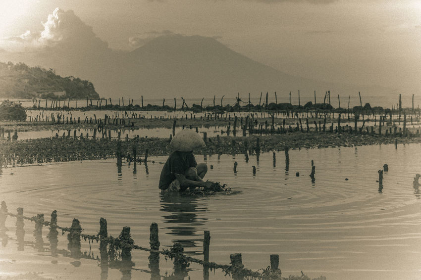 seaweed fisherman preparing for the harvest in the nusa penidailand i feel so lucky to see this view Balinese Life EyeEmNewHere Nusapenida Backto1980 Balinese Woman Fishermanvillage Nusapenidaisland Oldpicture Seaweed Fisherman Tradisional