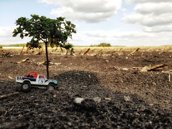 Toy Toyphotography Offroad Pickup Truck Miniature Miniatures Matchbox Tree Rural Scene Road Field Sky Close-up Landscape Cloud - Sky Land Vehicle Toy Car Vehicle