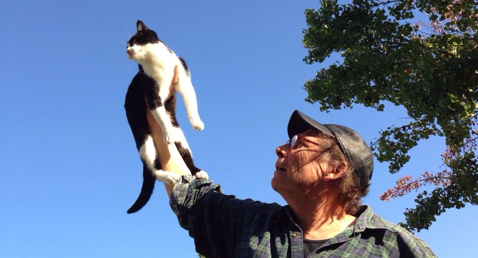 Woman holding cat in air