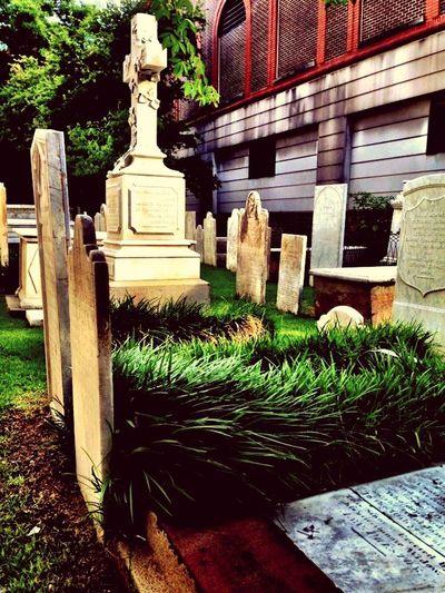 Charleston SC Cemetery Graveyard Gravestones Overgrown And Beautiful Green Cross