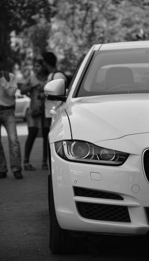 THE WHITE BEAST Cars EyeEm Best Shots EyeEm Gallery EyeEmNewHere JAGUAR Jaguar Car Jaguar Xf Love Autocar Black And White Blackandwhite Car Headlight Jaguarxf Jajaguar Mode Of Transport Shadow Topgear Transportation White Background