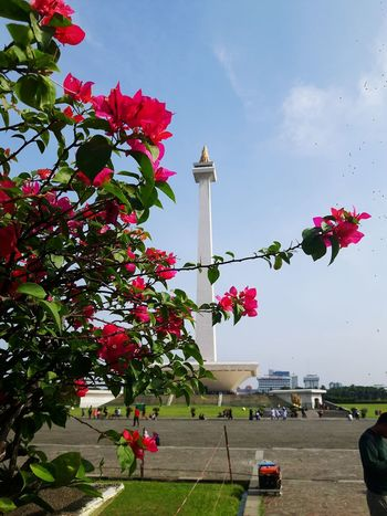 monument Outdoors Jakartaphotography Jakarta Cityscape Architecture Building Exterior Jakarta Jakarta Capital Region Jakarta Today