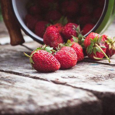 Доброе ягодное утро!🍓🍓 Счастливого летнего денька, друзья!💟💟