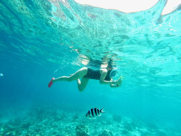 Water Sea Nature Turquoise Colored Philippines Underwater Swimming UnderSea People Diving Flipper Snorkeling Adventure Underwater Diving Marine Exploration Lifestyles Trip Full Length Scuba Diving Fish Women Exploring Tourist Travel