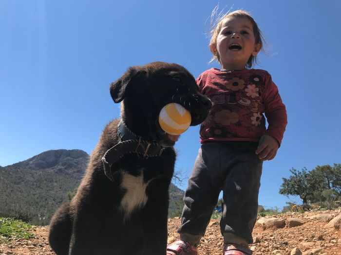 dog child and play Childhood Child Sky Sunlight Nature Clear Sky Mammal Day Real People Mouth Leisure Activity Mouth Open Low Angle View Emotion Casual Clothing People Blue Innocence Outdoors