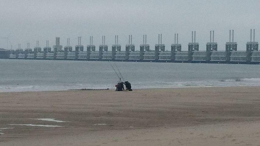 Fishermen Fishing Zeeland  Oosterschelde Deltawerken Zeeland❤️ SEAFOOD🐡 Food Stories Beach Fish Beach Day Outdoors Sand Water Sea Low Tide