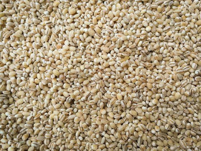 sorghum seed background / grains or cereal sorghum seed pile on the texture background Agricultural Agriculture Background Black Blue Brown Cereal Close Closeup Crop  Cultivated Dry Eating Farm Farming Field Flour Food Free Gluten Grain Grains Green Growth Harvest Healthy Ingredient Isolated Jowar Macro Millet Natural Nature Object Organic Plant Raw Red Rice Rural Seed Seeds Sorghum Stem Texture Up Vegetarian Wheat White Yellow