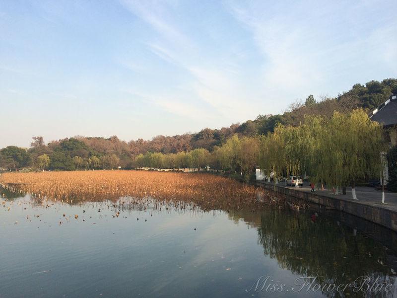 Hello World XiHu Autumn ThatDay Missing Want Back Beautiful Nature Beautiful Day ???