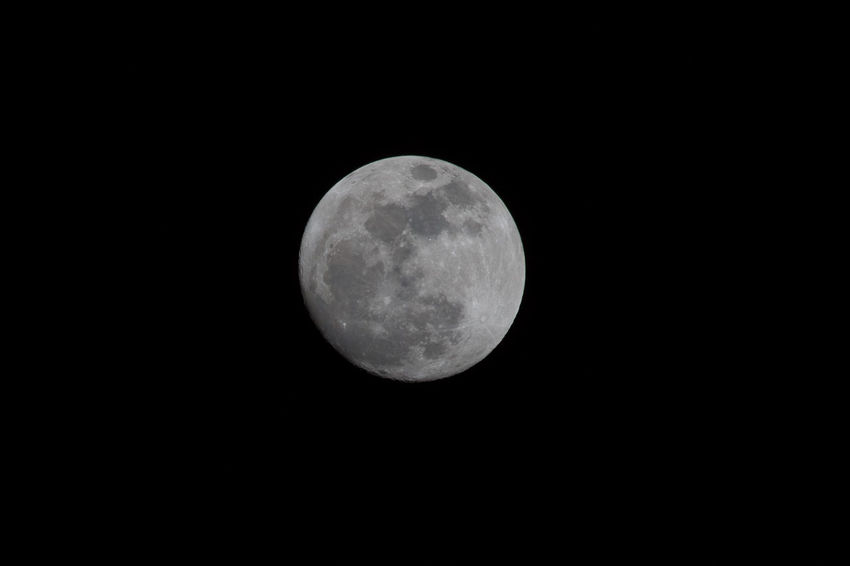Full moon Astronomy Beauty In Nature Clear Sky Close-up Low Angle View Moon Moon Surface Nature Night No People Outdoors Planetary Moon Scenics Sky Space Space Exploration