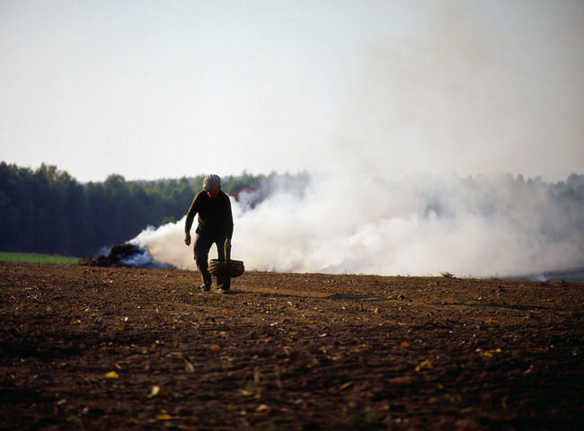 Agriculture Backwardness Farmer Ground Hard Work Manual Agriculture Men One Person Outdoors Peasant Poland Polen Potatoes Rural Rural Life Rural Scene Smoke Smoke - Physical Structure Traditional Culture