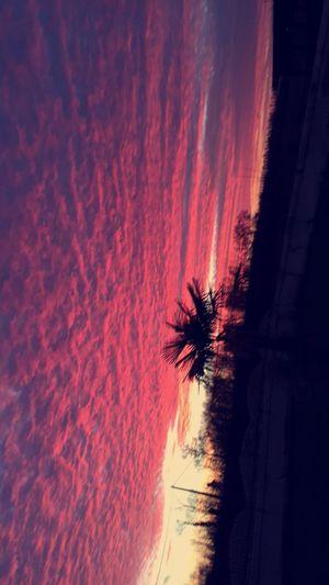 Vivons avec de la joie et beaucoup de couleur dans nos cœurs First Eyeem Photo