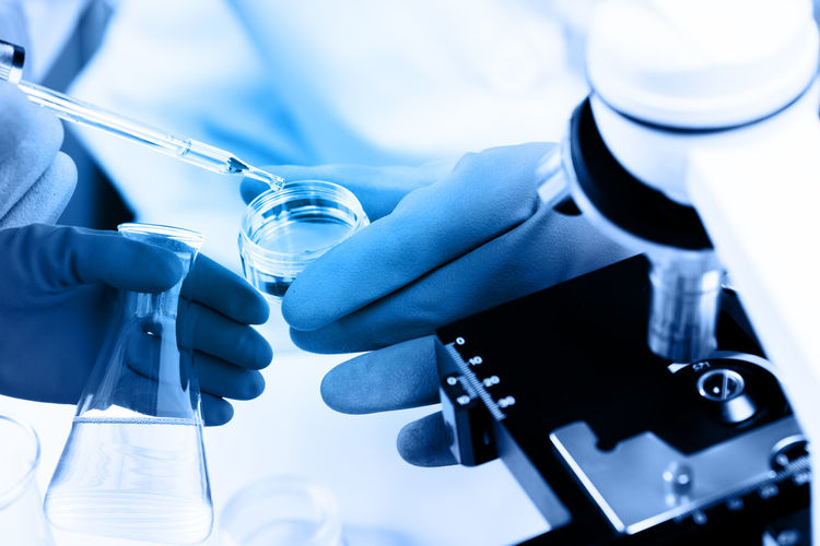 Close-up of scientist working at laboratory
