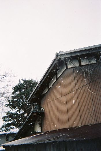 Portrait Streetphotography Street Photography Streetphoto_color Fujifilm 写ルンです Japan Kansai OSAKA Snow ❄ Snow Snowing Snow Day House Hut