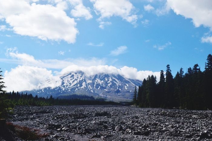 Enjoying a beautiful view of Mt Saint Helens!!!! Hanging Out Relaxing Taking Photos Enjoying Life Sumertime Outdoors Walking Around Walking Around Taking Pictures Walking The Dog The Journey Is The Destination Nikond3300 Mt St Helens Muddy River Water Editedbyme Forest Sunny Cloudy Day