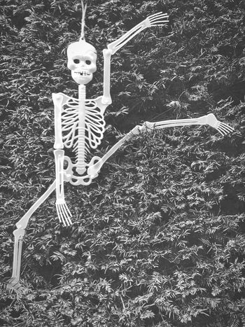 Semaphore skeleton 👻😊 Human Skeleton Outdoors Skeleton No People Day Haloween IPhone Photography Iphoneonly IPhone Black And White Photography Blackandwhite Photography Black & White Black And White Blackandwhite EyeEm Gallery EyeEm IPhoneography Eye4photography  Iphonephotography