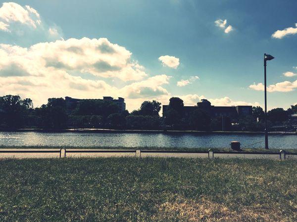 River Main Frankfurt Sunshine
