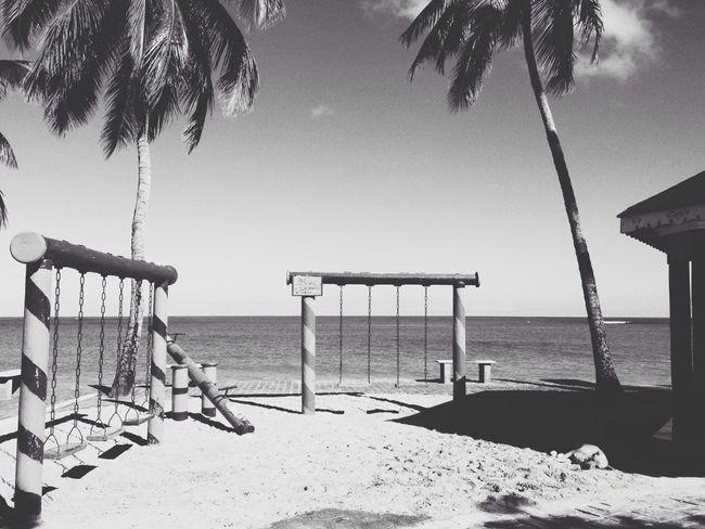Black And White Caribbean Tropical Black & White