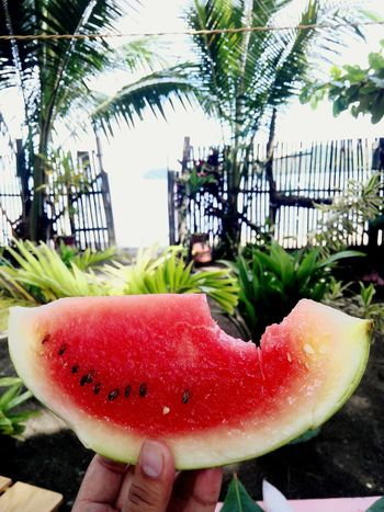 Life at sea. Fruit Watermelon Freshness Outdoors Holding Day Travel Destinations Food Palm Trees Mobilephotography
