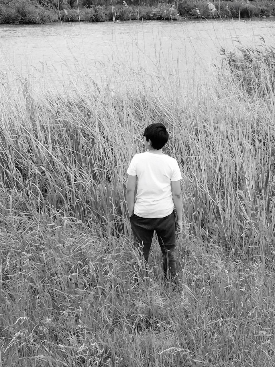 rear view, real people, field, nature, grass, full length, growth, one person, leisure activity, walking, casual clothing, standing, beauty in nature, outdoors, day, landscape, lifestyles, tranquility, men