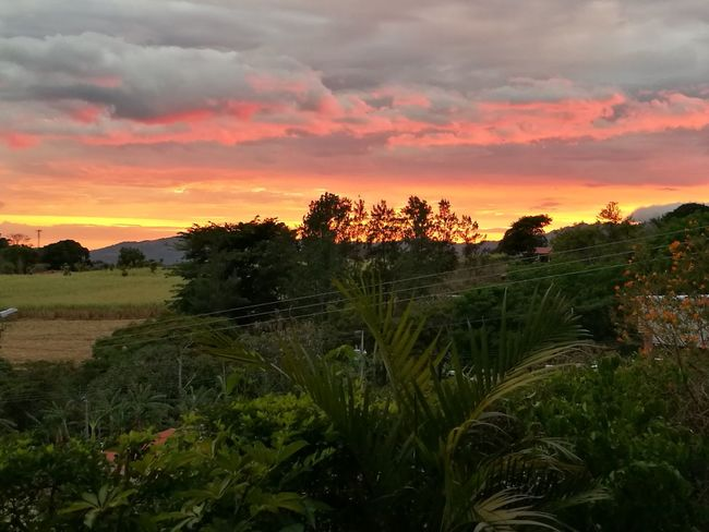 Fgugal Sunset Nature