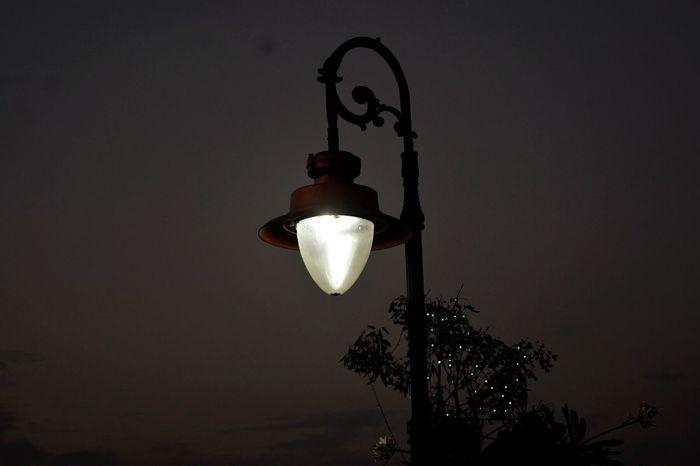 Street Light Black Sky Nature