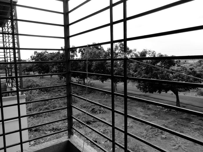 Sony Xperia M5 Blackandwhite Tree Road Backyard Rainy Days☔ Grill Rope The Street Photographer - 2016 EyeEm Awards Showcase June Fine Art Photography Monochrome Photography Welcome To Black Art Is Everywhere EyeEmNewHere The Secret Spaces