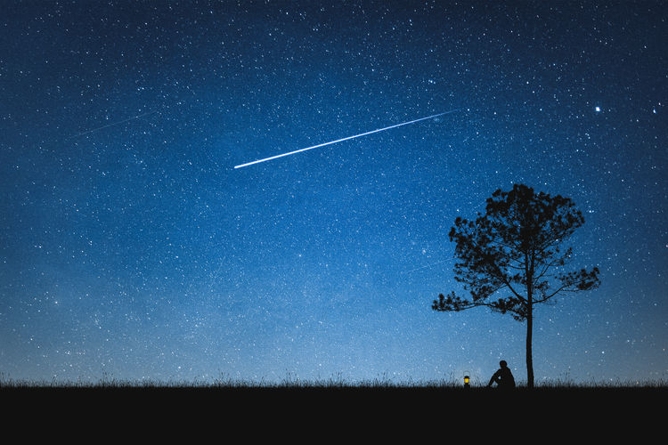 Silhouette person sitting by tree against shooting star in sky at night
