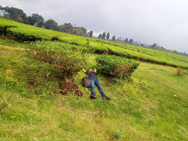Green Color Child Landscape Nature Full Length Field Childhood Agriculture Outdoors One Person People Day I See Your Soul This Is Indonesia Green Color Do You See What I See? Beauty In Nature I See You In My Future Nature Lovers Photography Green Plant Just Taking Pictures Hahahaha 😂😂😂😂😂 Hello Nature