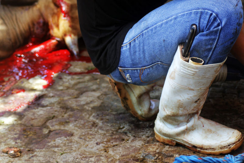 Blood Boot Islam Ritu Jeans Knife Qurban Religious Event Slaughter House
