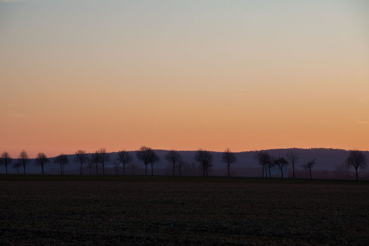 Agriculture Beauty In Nature Day Field Idyllic Landscape Nature No People Outdoors Rural Scene Scenics Silhouette Sky Sunset Tranquil Scene Tranquility Tree