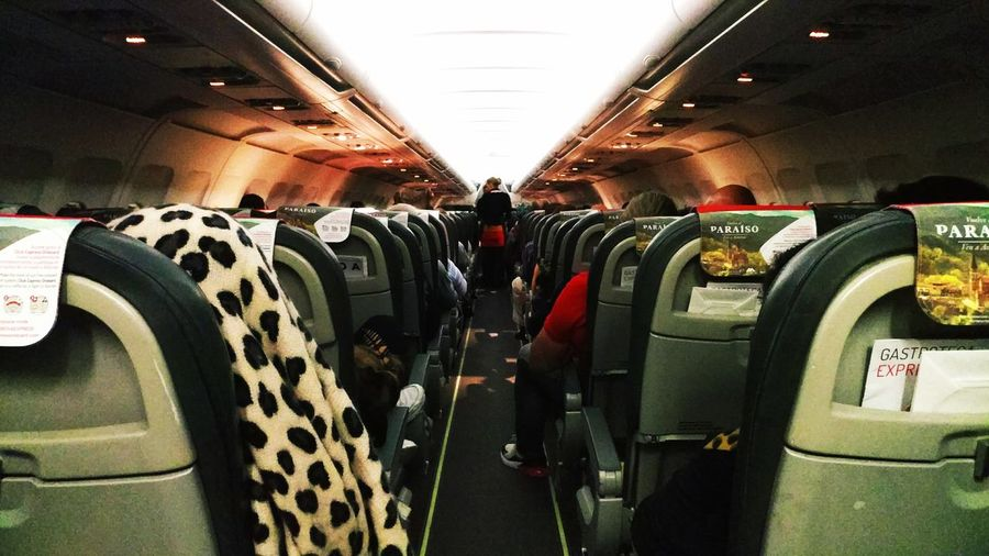 Rear view of people in airplane