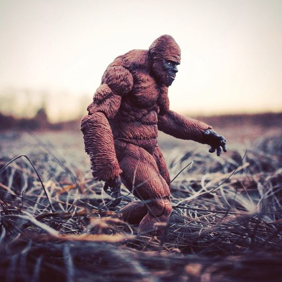 Sasquatch in North Haven! Bigfoot Toyphotography Creatureplica Sasquatch Squatch Actionfigures Toysoutdoors Cryptid Cryptozoology